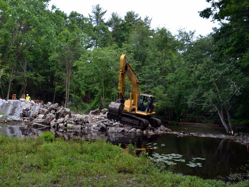 Curtis Pond Dam Removal