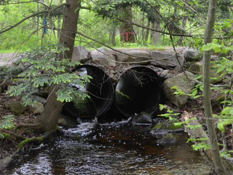 Crooked Pond Brook Culvert Replacement