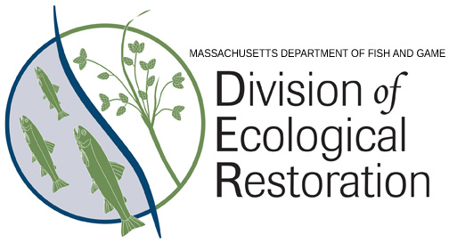 Job Opening: Ecological Restoration Specialist, Division Of Ecological Restoration [Closes June 9]