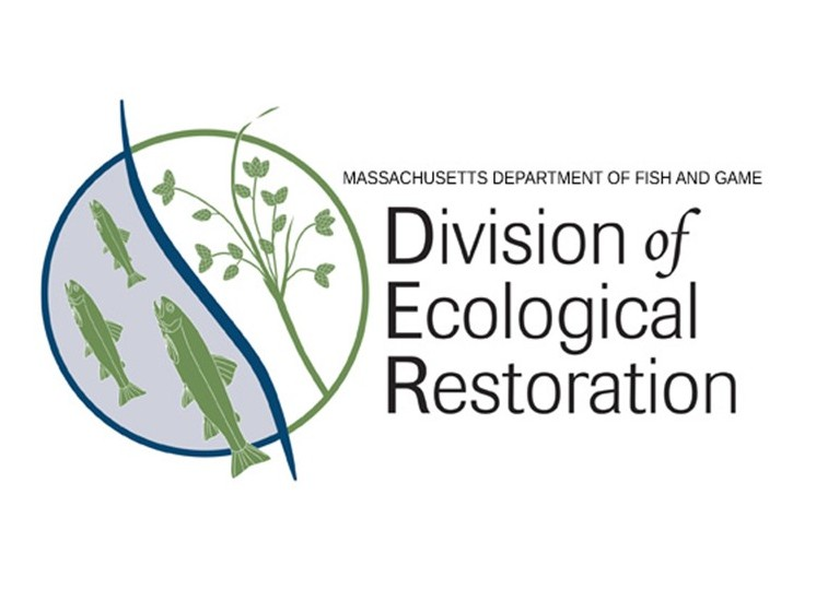 Massachusetts Division Of Ecological Restoration