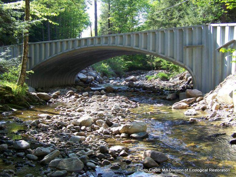 Improving Stream Crossings Workshops