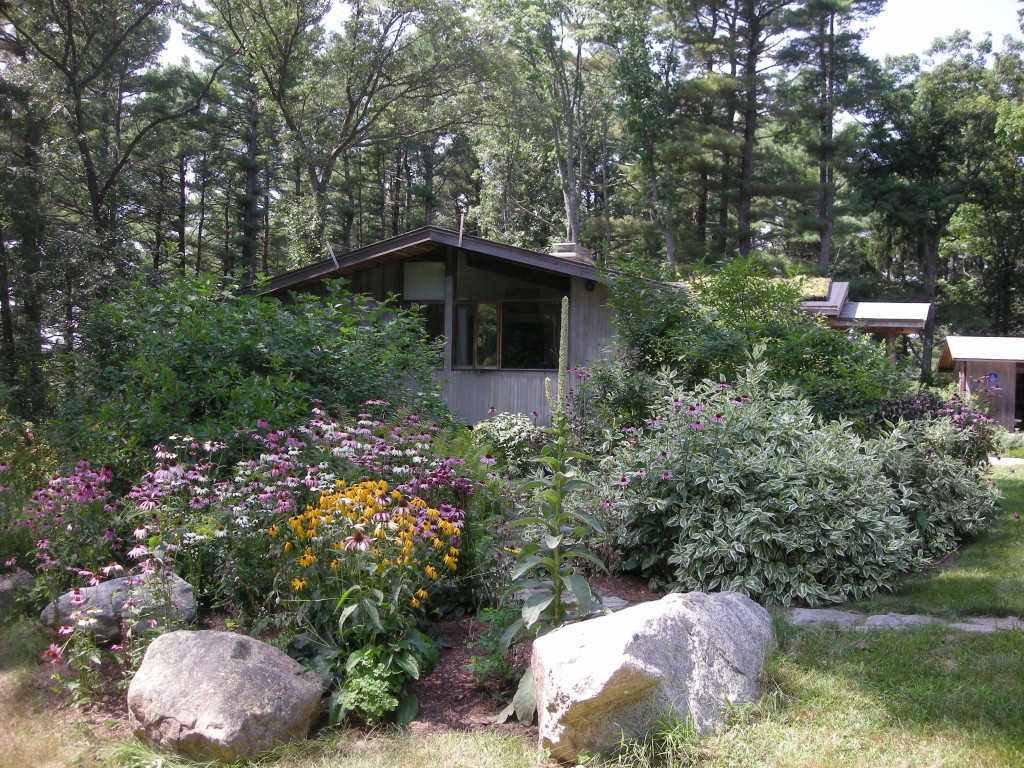Native plant and rain gardens at Ipswich River Watershed headquarters demonstrate low maintenance sustainable water use and low impact gardening.