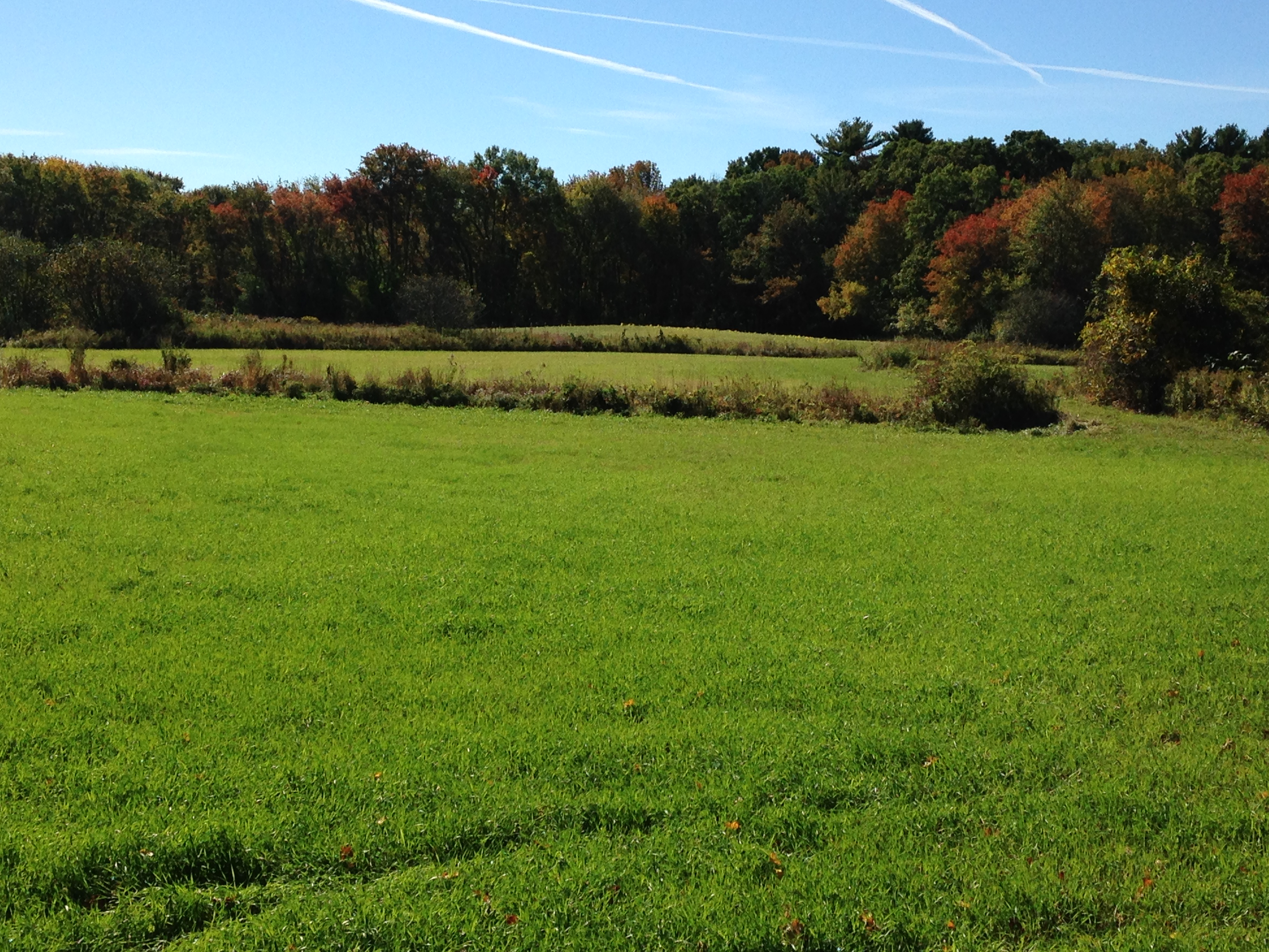 Thanks To Funding From The Merrimack Conservation Partnership, 120 Acres Of Land Were Protected By Essex County Greenbelt On The Leonhard-Eldred Farm In Boxford And North Andover.