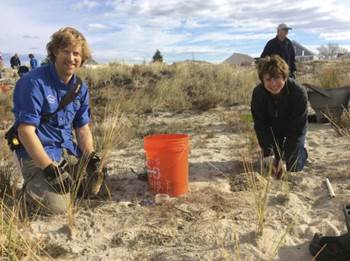 The Great Marsh Resiliency Partnership's Efforts To Restore The  Sand Dunes Of Newbury, Newburyport And Salisbury, MA Got A Boost In December From PIE-Rivers Partners At The University Of New Hampshire. Led By Coastal Ecologist Dr. Gregg Moore, Volunteers Came Out To Plant Native Dune Grasses And Install Sand Fencing In Preparation For The Coming Winter Storms.