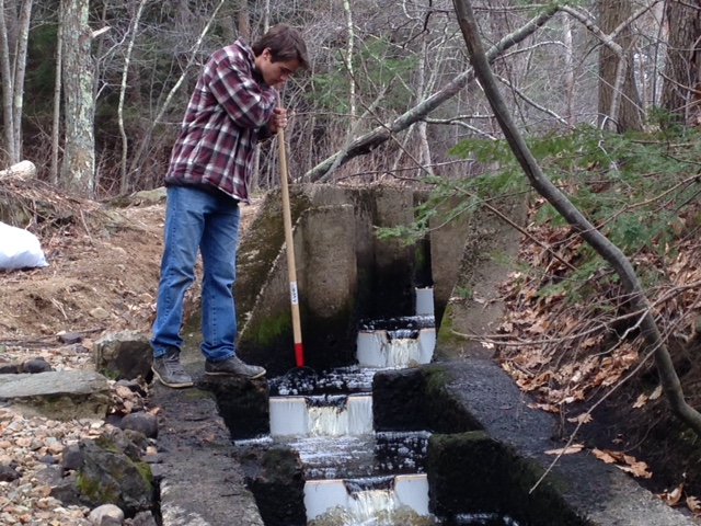 Trout Unlimited Nor'East Member Alex Walsh Adjusts Flow Through The Willowdale Ladder In 2015