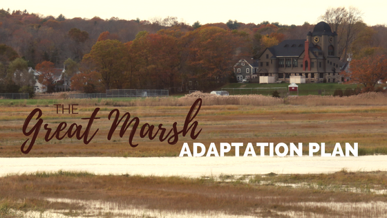 The Great Marsh Coastal Adaptation Plan Is Now Online